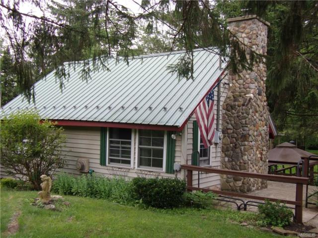 8956 Route 219, Ashford, NY 14171 (MLS #B1211500) :: Updegraff Group
