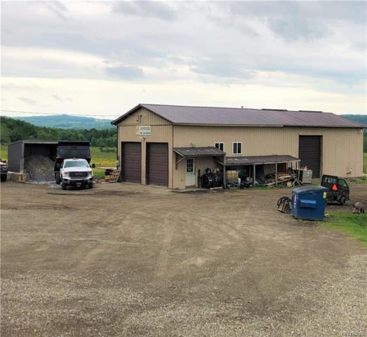 11045 Route 240 B, Ashford, NY 14171 (MLS #B1212225) :: 716 Realty Group