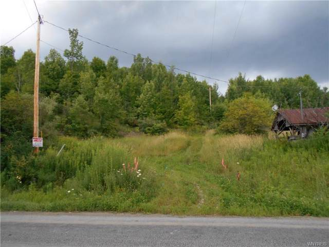 4515 County Route 82 Road N, Troupsburg, NY 14885 (MLS #B1225983) :: Lore Real Estate Services