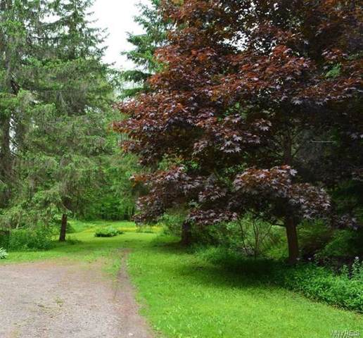 0 Nys Route 242, Ellicottville, NY 14731 (MLS #B1229509) :: The Rich McCarron Team