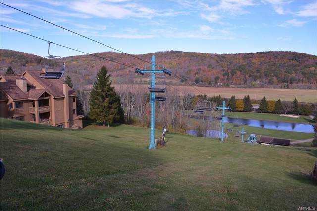 D103 Snowpine Village 5915, Great Valley, NY 14741 (MLS #B1233541) :: Updegraff Group