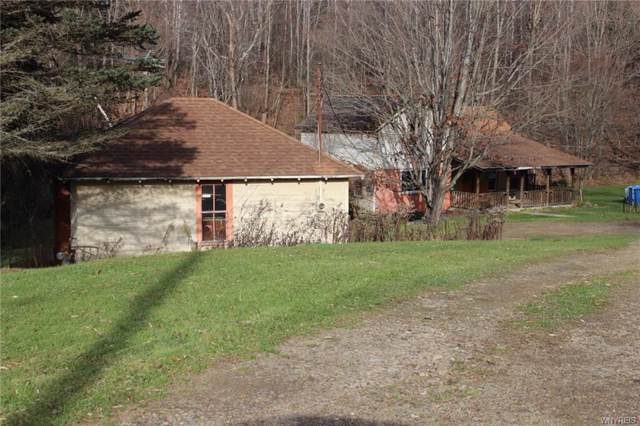 8982 Barber Road, Clarksville, NY 14715 (MLS #B1237806) :: The CJ Lore Team | RE/MAX Hometown Choice