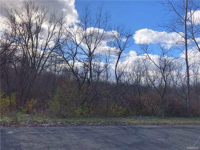 VL Webster Road, Orchard Park, NY 14127 (MLS #B1238324) :: BridgeView Real Estate Services