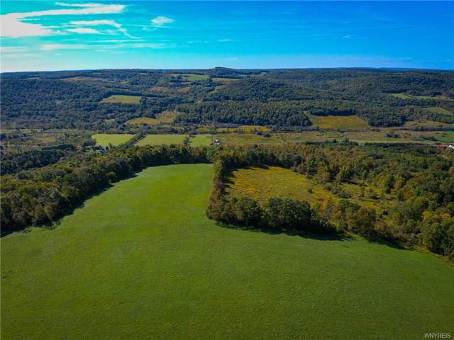 2020 State Route 417, Andover, NY 14806 (MLS #B1243193) :: Robert PiazzaPalotto Sold Team