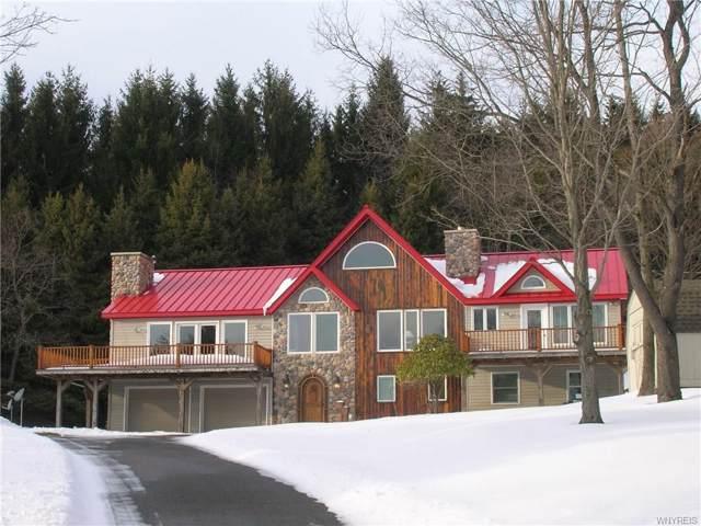 6590 Plum Creek Road, Mansfield, NY 14731 (MLS #B1245055) :: MyTown Realty