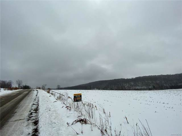 Lot A Winchell Road, Lyndon, NY 14737 (MLS #B1245446) :: Lore Real Estate Services
