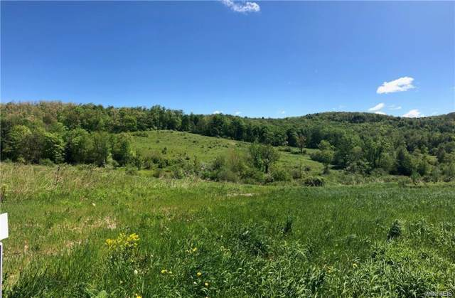 00 Union Valley Rd, Hinsdale, NY 14760 (MLS #B1246206) :: MyTown Realty