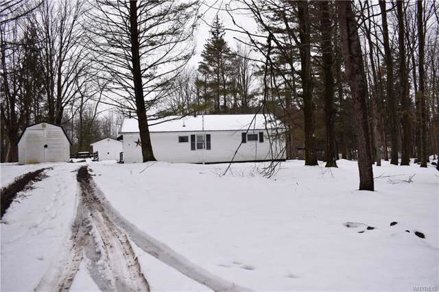 155 Summerset Ext Drive, Java, NY 14009 (MLS #B1246717) :: BridgeView Real Estate Services