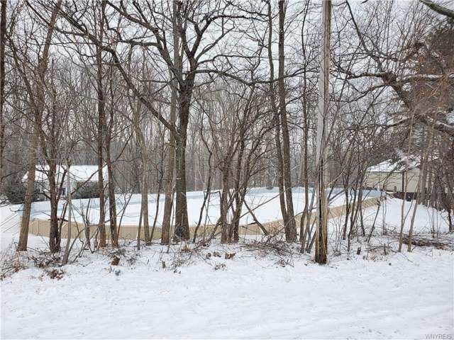 0 Ridge Road, Ridgeway, NY 14103 (MLS #B1246896) :: MyTown Realty