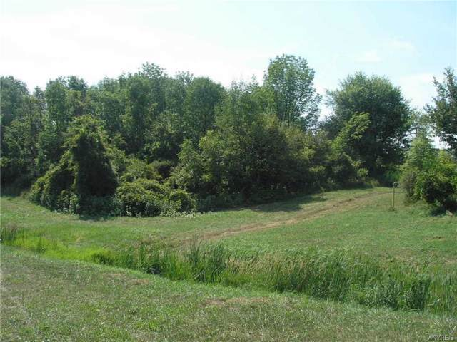 0 Bush Hill Road, Farmersville, NY 14060 (MLS #B1247043) :: Updegraff Group