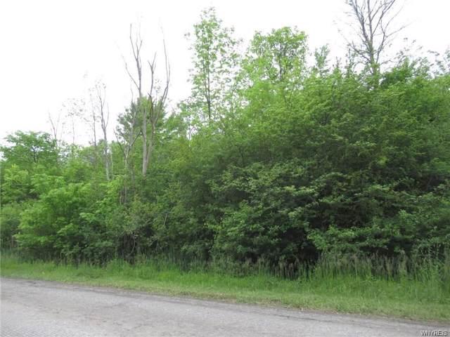 VL Bush Road, Grand Island, NY 14072 (MLS #B1247095) :: MyTown Realty