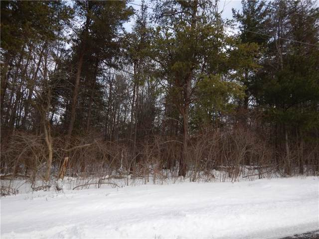 V/L Schoellkopf Road, Hamburg, NY 14075 (MLS #B1247490) :: 716 Realty Group