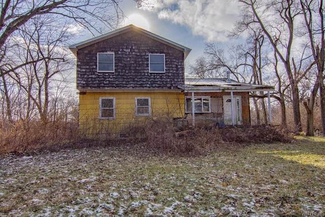 2858 Lower Mountain Road, Lewiston, NY 14131 (MLS #B1247863) :: The Chip Hodgkins Team