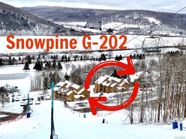 G-202 Snowpine Village, Great Valley, NY 14741 (MLS #B1248447) :: BridgeView Real Estate Services