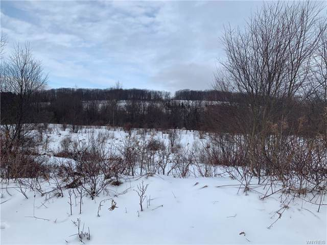 0 Dublin Hollow Road, Mansfield, NY 14755 (MLS #B1249143) :: BridgeView Real Estate Services