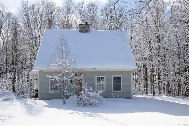 1755 Grover Road, Aurora, NY 14052 (MLS #B1251271) :: BridgeView Real Estate Services