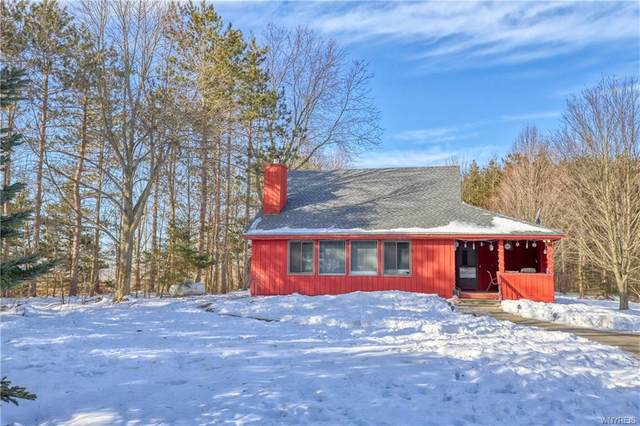 9403 Monk Hill Road, East Otto, NY 14729 (MLS #B1253231) :: The Chip Hodgkins Team