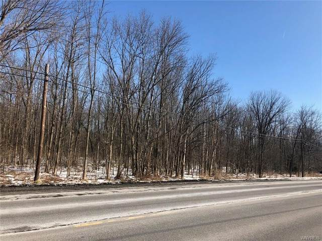 737 Main Road, Pembroke, NY 14036 (MLS #B1253736) :: MyTown Realty