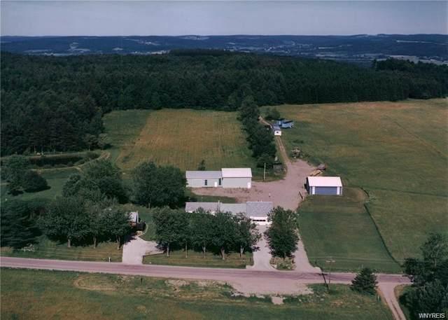 9244 Dake Hill Road, Otto, NY 14719 (MLS #B1254482) :: BridgeView Real Estate Services