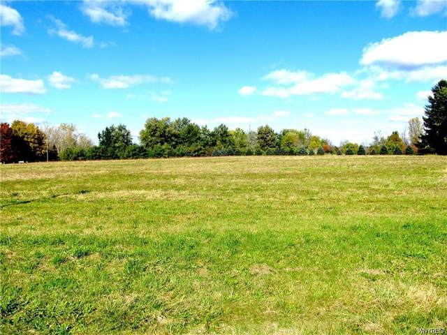 VL Maple Road, Newstead, NY 14001 (MLS #B1259117) :: Lore Real Estate Services