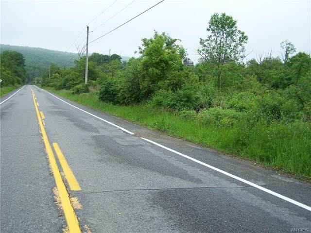 5 acres Center Line Road, Wales, NY 14169 (MLS #B1259136) :: Robert PiazzaPalotto Sold Team