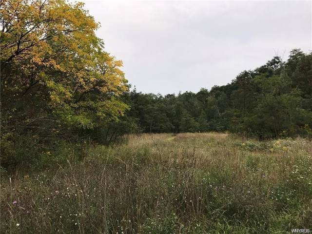 9041 Gowanda State Road, Eden, NY 14057 (MLS #B1259578) :: 716 Realty Group