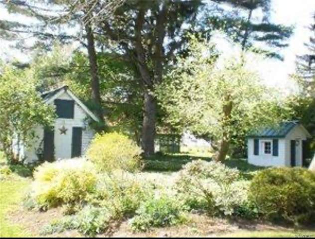 44 Aldrich Street, Collins, NY 14070 (MLS #B1262418) :: Lore Real Estate Services