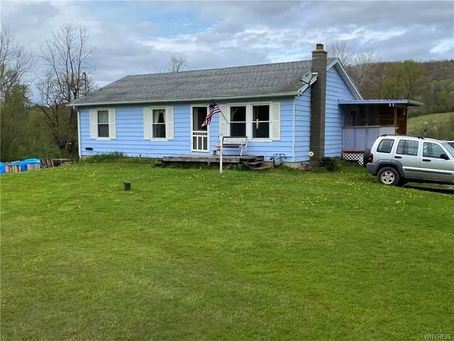 9826 Deer Creek Road, Genesee, NY 14770 (MLS #B1265431) :: Updegraff Group