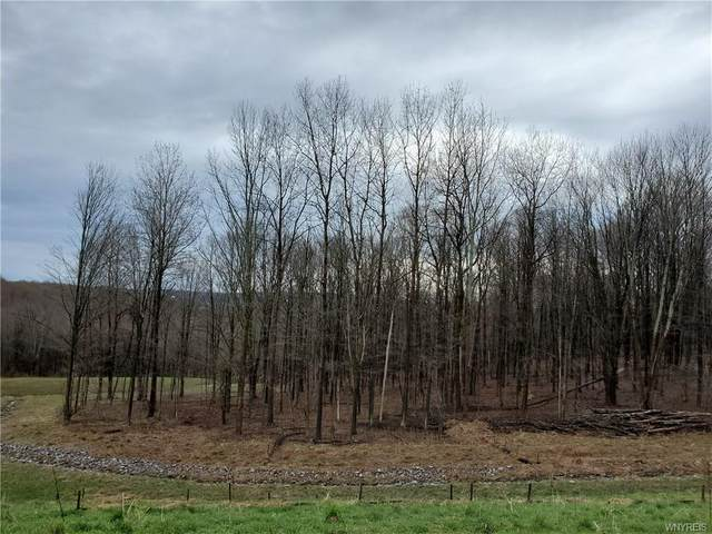 1 Trail Heights, Ellicottville, NY 14731 (MLS #B1265967) :: Updegraff Group