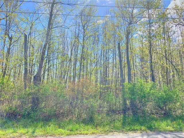 VL Lot 1 Utica Street, Evans, NY 14006 (MLS #B1266083) :: Lore Real Estate Services