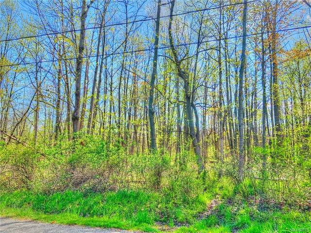VL Lot 2 Utica Street, Evans, NY 14006 (MLS #B1266084) :: Lore Real Estate Services