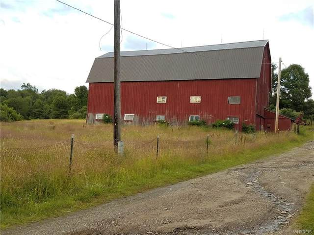 0 Emery Rd (Lilly Rd.) Road, Angelica, NY 14709 (MLS #B1269838) :: Robert PiazzaPalotto Sold Team