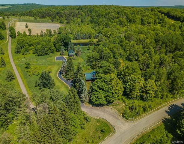 7120 Poverty Hill Road, Ellicottville, NY 14731 (MLS #B1273816) :: Robert PiazzaPalotto Sold Team