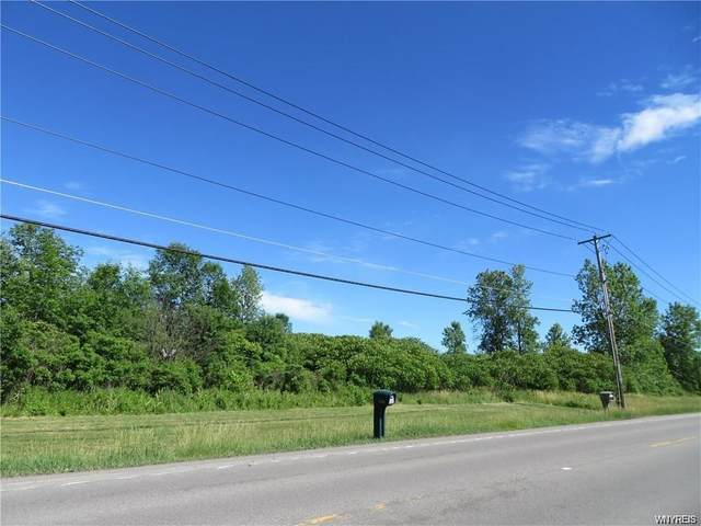 6141 Old Beattie Road, Lockport-Town, NY 14094 (MLS #B1274732) :: 716 Realty Group