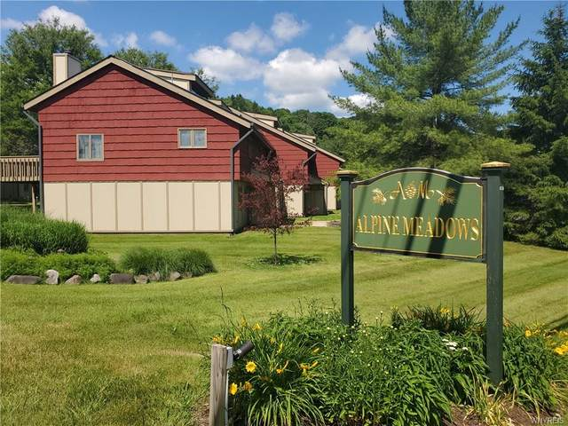7 Alpine Meadows, Ellicottville, NY 14731 (MLS #B1275291) :: The Chip Hodgkins Team