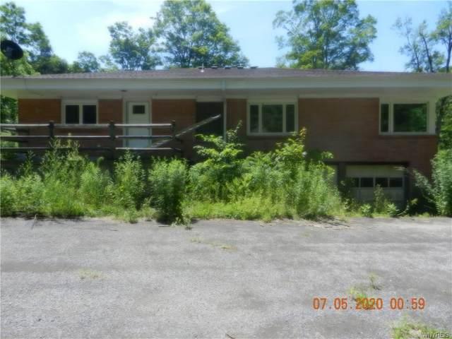 10187 New Oregon Road, North Collins, NY 14057 (MLS #B1276677) :: MyTown Realty