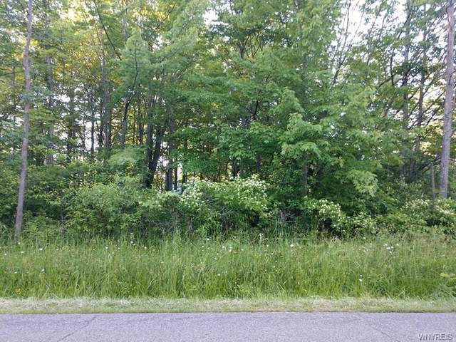 VL Chippewa Street, Evans, NY 14006 (MLS #B1277092) :: Lore Real Estate Services
