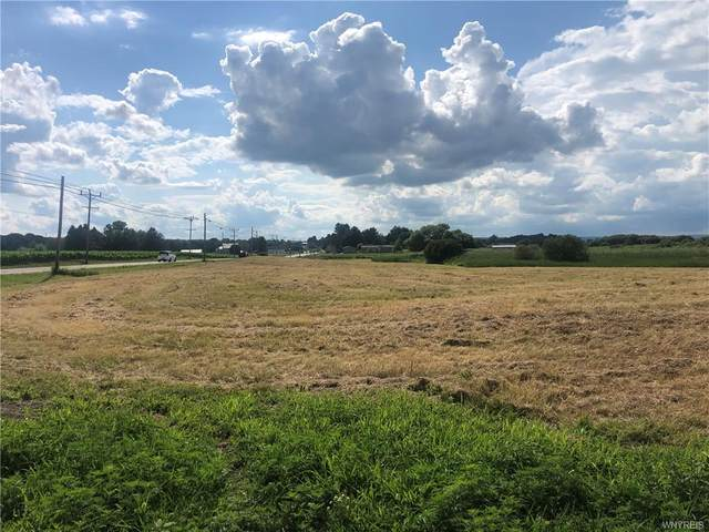 0 State Route 20A E, Warsaw, NY 14569 (MLS #B1278844) :: MyTown Realty