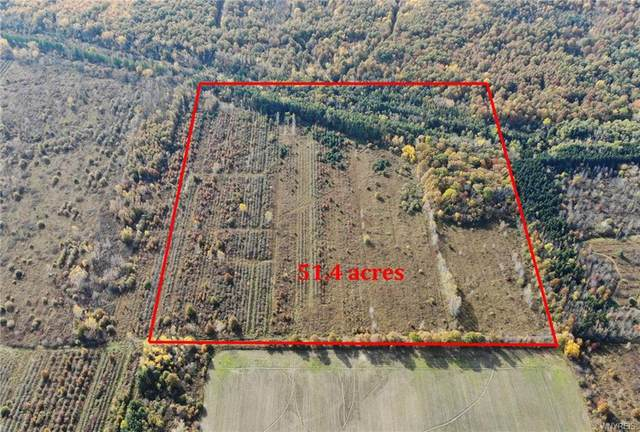N/A Lutts Road W, Porter, NY 14174 (MLS #B1280522) :: Robert PiazzaPalotto Sold Team