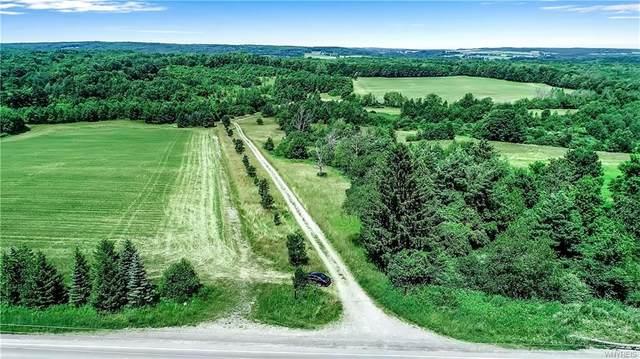 4349 Telegraph Road, Eagle, NY 14024 (MLS #B1281047) :: BridgeView Real Estate Services