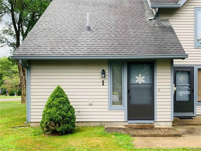 1 Wildflower Apts, Ellicottville, NY 14731 (MLS #B1281162) :: Lore Real Estate Services