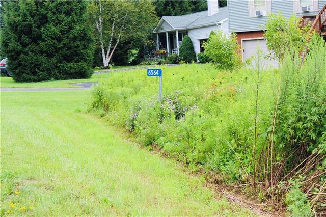 6564 Maples Road, Ellicottville, NY 14731 (MLS #B1284277) :: Lore Real Estate Services