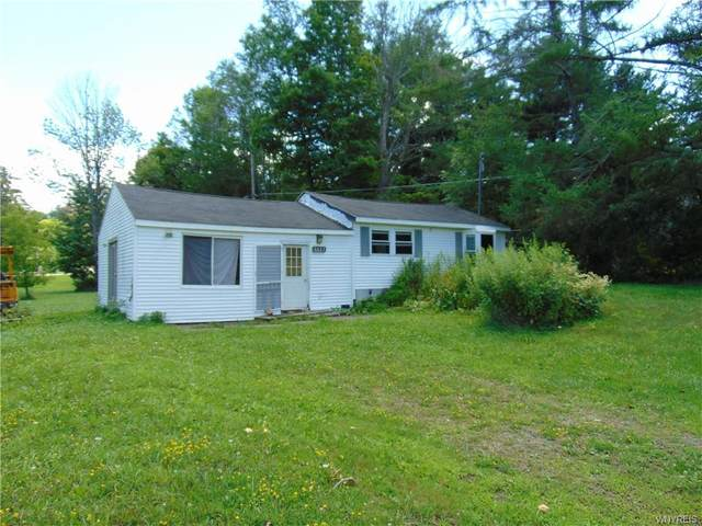 7423 Hayes Hollow Road, Colden, NY 14170 (MLS #B1284724) :: MyTown Realty