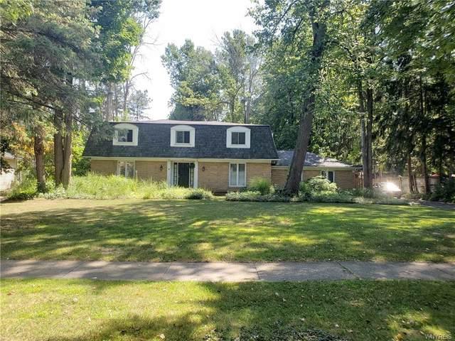 55 Foxhunt Lane, Amherst, NY 14051 (MLS #B1286122) :: Avant Realty