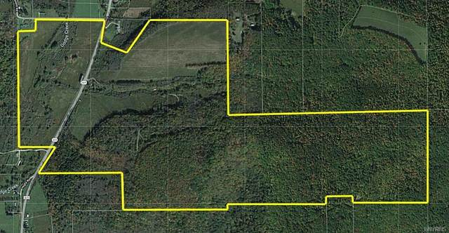 2776 Co Road 305, Clarksville, NY 12041 (MLS #B1286822) :: Lore Real Estate Services
