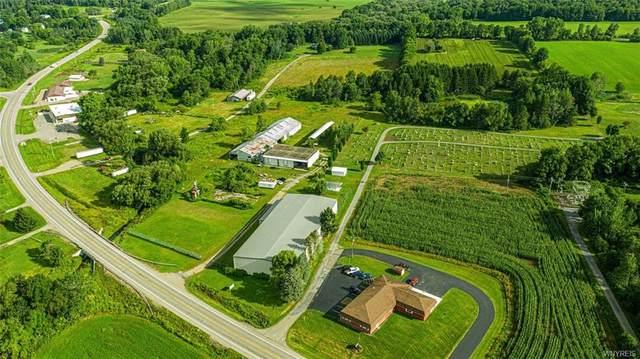 8844 Route 243 B, Rushford, NY 14777 (MLS #B1288075) :: BridgeView Real Estate Services