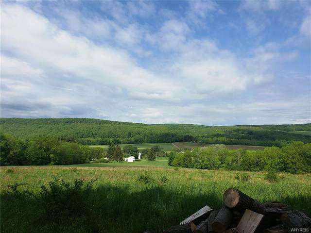 7110 County Road 7A, New Hudson, NY 14727 (MLS #B1288266) :: Lore Real Estate Services