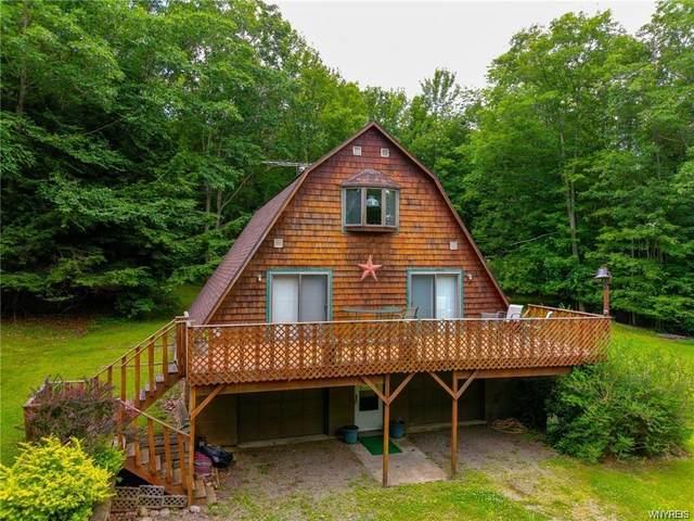 5595 Hog Brook Road, Alma, NY 14895 (MLS #B1289647) :: Lore Real Estate Services