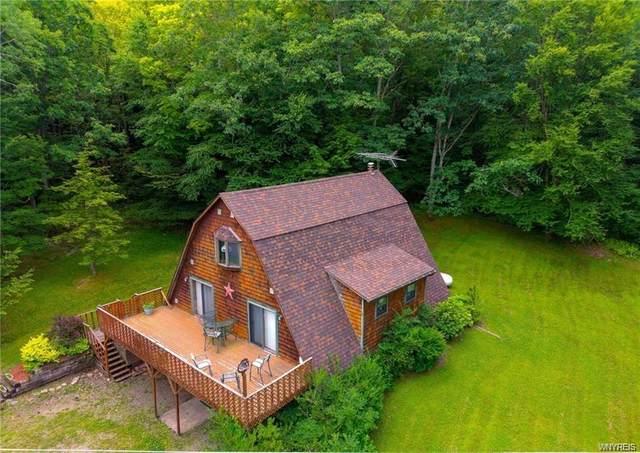 5595 Hog Brook Road, Alma, NY 14895 (MLS #B1289660) :: Lore Real Estate Services