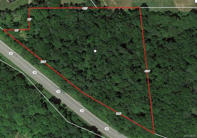 0 Route 39, Pike, NY 14130 (MLS #B1290563) :: Robert PiazzaPalotto Sold Team